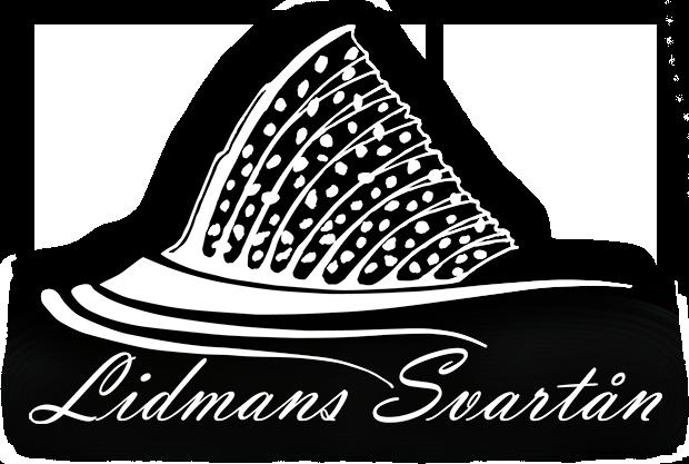 Lidmans Svartån